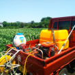 トウモロコシ防除