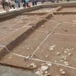 飛鳥寺西方遺跡 平成29年度調査 現地説明会