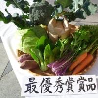 第7回食育フェアを開催~箕面の食を楽しもう!~