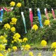 里山ガーデン~谷戸の風景