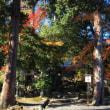 琵琶湖一周紅葉列車の旅、まずは坂本