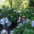 そろそろ紫陽花の季節ですね!チップネスのみんなと鎌倉に行きました もう5年経ちました(´∀`*)