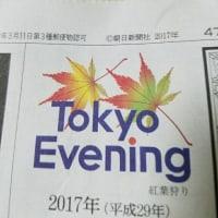 今日の夕刊