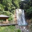 種子島→鹿児島 day7 霧島温泉