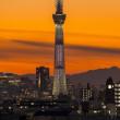 里見公園から富士山