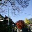 フォト散歩 /里山の紅葉