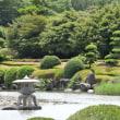 南楽園 花菖蒲(宇和島)