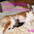 祝1歳♪ ~Happy Birthday to Elsa's babies!~