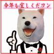ひろみです【福岡市最大級の社交ダンス教室はダンススクールライジングスター 】