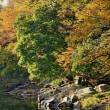 嵐山渓谷の紅葉まつり 2017 その2