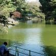 武蔵関公園です (4)