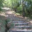 6 木宗山(上段広場270m:安佐北区)登山(続き)  下段の広場に