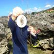 オヤビッチャ : 台湾特派員報告①    釣査143種目