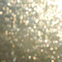 今 朝 の 窓 の 光    ー  光 の 記 憶  編 ー