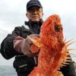 カサゴ釣り