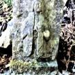 レアな石仏発見