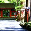 緑の競演-京都市左京区:貴船神社