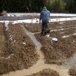 積雪、畑の排水