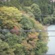 10月28日秋深まるご近所の景色