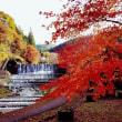 名古屋から岐阜へ思いつきで・・・【田園調布 鵜の木の不動産管理 売買 賃貸は城南ハウジングへ】
