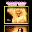北広島町の今田神楽団が「殺生石」を披露する!演、舞、奏楽、衣装、金狐すべて感動する。広島神楽定期公演 第10回