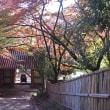 101 川久保バス停からポンポン山を経て紅葉の金蔵寺 2017.11.17