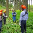 森づくり塾の開催