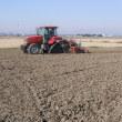 麦の播種作業が続いています。
