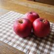 りんごの季節になりました♪