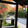 紅葉 in 京都