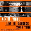 13th VINYL