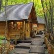 ②マレーシア人の北海道旅の記録:富良野と美瑛、そして大雪山国家公园