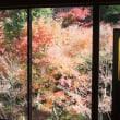 紅葉に出逢いに・・・⑤(環境芸術の森) 【ひで某】