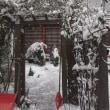 朝の雪かきは、体操
