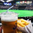 るっちゃんと野球観戦