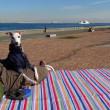 ひさしぶりの城南島海浜公園