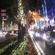大阪 御堂筋 ライトアップな今年の冬