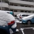 雪の日友に会う