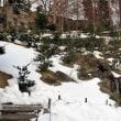 金沢城公園ー玉泉院丸の西日。