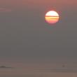 徘徊老人のひとりごと 熱海日乗(平成30年7月19日、木曜日、晴れ)