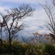 紅葉とちょっとだけ見えた富士山~山中湖パノラマ台