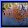 水面の絵画
