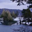 植物の「ソシンロウバイ」「シナマンサク」や雪景色。