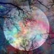 ★9月の満月のエネルギー (9月5日)