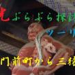 日光ぶらぶら探訪ツーリング ②  神橋・門前町から本宮へ三猿に人生を振り返り想う ^^! ブログ&動画