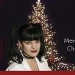 NCIS アビーのクリスマス