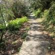 「修業の道場」土佐の国へ ~ 海辺の道をひたすら歩く