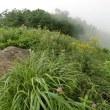谷川岳 天神平自然散策ツアー  8月5日