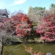 紅葉の上田城~軽井沢へ
