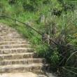 2 福王寺山(496m:安佐北区)登山  先ずは舗装の階段から